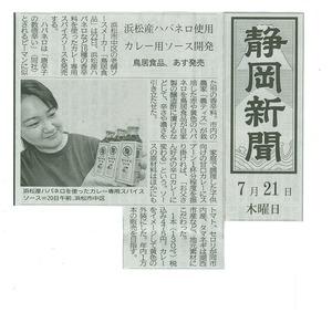 カレー専用静岡新聞.jpg