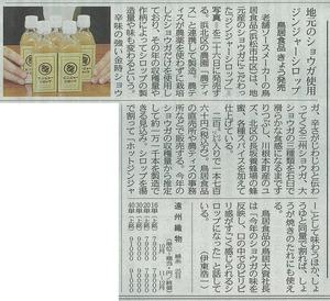 中日新聞ジンジャー.jpg